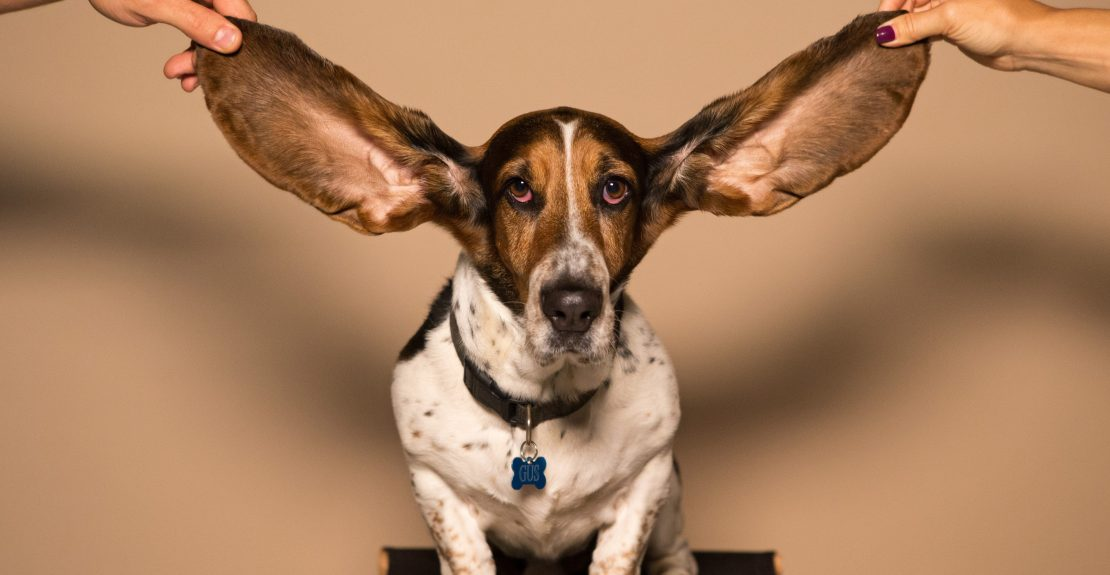 5 Tips to Hearing From God