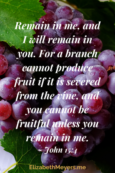 Remain in me and I will remain in you. For a branch cannot produce fruit if it is severed from the vine, and you cannot be fruitful unless you remain in me. John 15:4