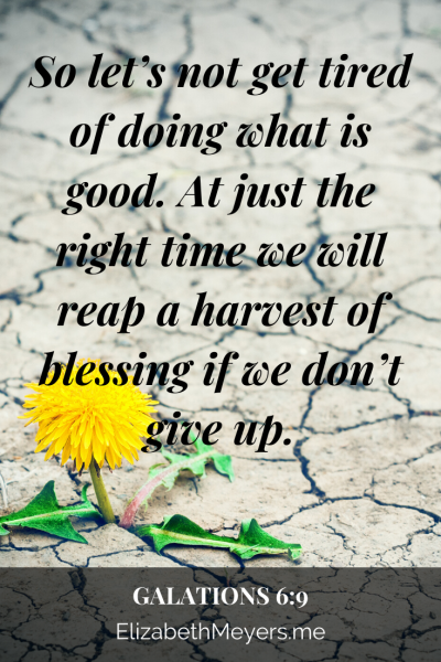 So let's not get tired of doing what is good. At just the right time we will reap a harvest of blessing if we don't give up.